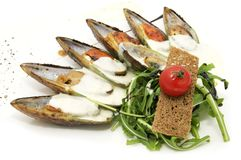 Mussel Royalty Free Stock Image
