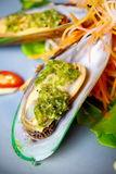Mussel apply spicy sauce. Stock Images