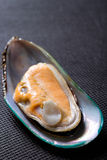 Mussel on black Stock Photo