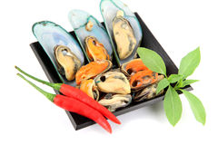 Mussel on black dish and Vegetables placed beside. Royalty Free Stock Image