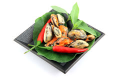 Mussel on black dish and Vegetables placed beside. Royalty Free Stock Photography