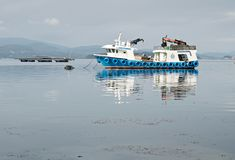 Mussel boat and mussel bed in sea. Mussel aquaculture. Marine landscape. Rias Bajas Galicia Spain stock photography