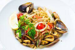 Mussel and calamari salad Royalty Free Stock Images