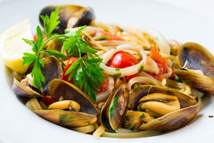 Mussel and calamari salad Royalty Free Stock Images