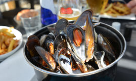 Mussel in Casserole in a restaurante Royalty Free Stock Photos