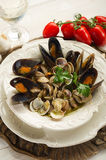 Mussel  and clam soup Stock Photos