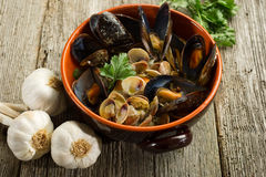 Mussel  and soup Royalty Free Stock Images
