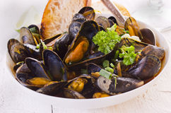 Mussel Cooked in Red Sauce Stock Photography