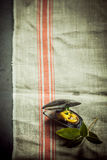 Mussel Dish and Leaves on Cloth with Copy Space Stock Image