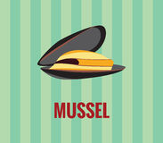 Mussel - drawing on green background. Royalty Free Stock Images