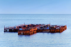 Mussel Farm Royalty Free Stock Images