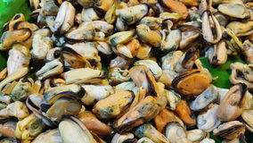Mussel. Food ingredients wih fried Stock Photos