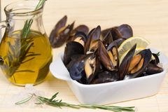 Mussel. Fresh mussels with oil on a white plate and rosemary, pitcher Stock Image