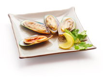 Mussel with lemon slice and parsley. On the squared plate over white background Royalty Free Stock Image