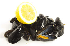 Mussel and lemon on white Stock Photos