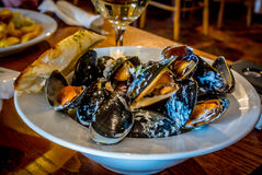 Mussel Lunch Stock Photography