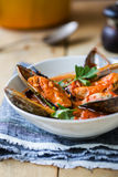 Mussel Marinara Royalty Free Stock Images