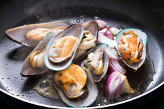 Mussel and onion. In frying pan royalty free stock image