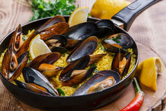 Mussel paella Stock Images