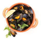 Mussel with parsley and lemon Royalty Free Stock Images