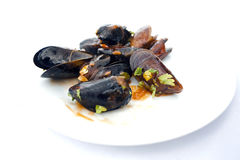 Mussel ready to eat Stock Photography