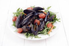 Mussel salad with tomatoes, rucola and carrot sticks Royalty Free Stock Photography