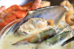 Mussel in sauce. A bowl of mussel in white sauce Royalty Free Stock Photo