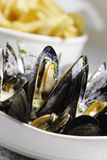 Mussel seafood and french frie Royalty Free Stock Photo