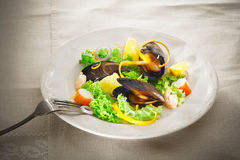 Mussel and seafood salad Royalty Free Stock Photo