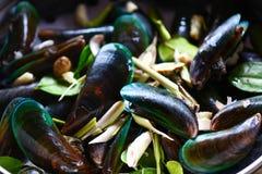 Mussel skorupa z ziele i pikantno?? gotuj?cym zielonego mussel paruj?cym owoce morza zdjęcie stock