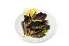 Mussel soup Royalty Free Stock Image