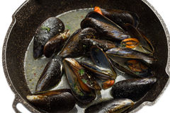 Mussel soup Royalty Free Stock Photography