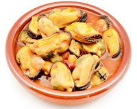 Mussel stew Stock Image