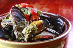 Mussel stew. On the pot Royalty Free Stock Photos