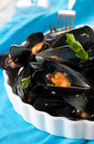 Mussel on the table Royalty Free Stock Photo