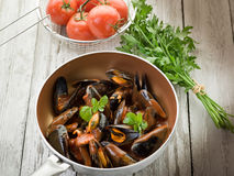 Mussel  with tomato sauce Royalty Free Stock Photo