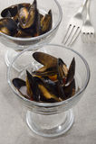 Mussel with tomato sauce in a cocktail glass Stock Photos