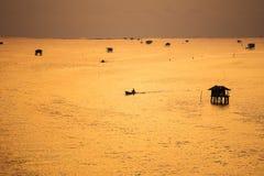 Mussel uprawia ziemię w morzu Zdjęcia Stock