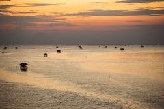 Mussel uprawia ziemię w morzu Obraz Stock