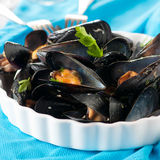 Mussel and wine Royalty Free Stock Images