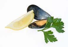 Mussel z cytryną i pietruszką obrazy stock