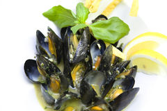 Mussels. Fresh mussels with lemon and basil Royalty Free Stock Photography