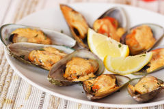 Mussels. Baked mussels with mayonnaise royalty free stock photos