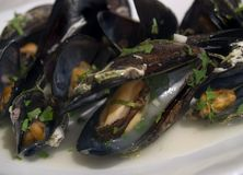 Mussels. Cooked mussels at the white plate Royalty Free Stock Images