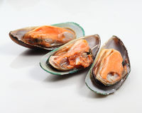 Mussels. Fresh mussels ready for cooking stock photos
