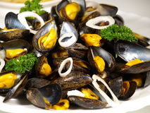 Mussels. Plate of mussels with parsley and shallot Stock Images