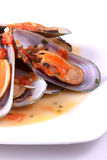 Mussels Stock Image