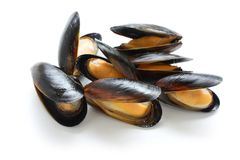 Mussels Stock Photos