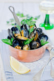 Mussels. In white wine with parsley Royalty Free Stock Photos