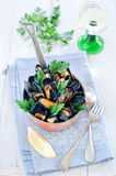 Mussels. In white wine with parsley Royalty Free Stock Photography